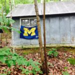 The student accommodations at the Biological Station — a 10,000 acre site on Douglas Lake, an invaluable resource for teaching and research.